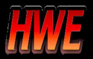HWE (HWE.com) Price 4000 USD only – DTrader Exposed