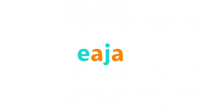 Eaja (Eaja.com) Domain Real Market Value $1900 Only – Brandpa.com Exposed