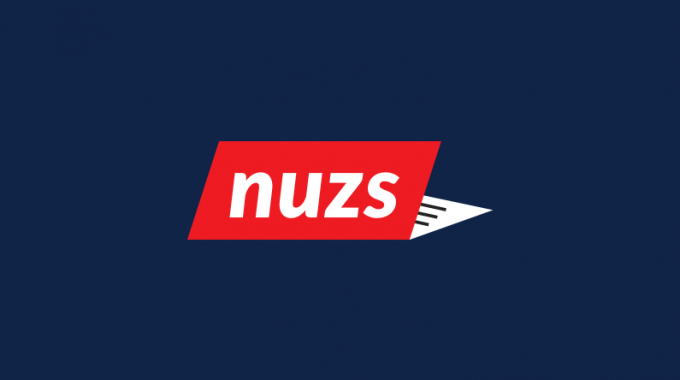 Nuzs (Nuzs.com) Domain Real Market Value $1500 Only – Brandpa.com Exposed